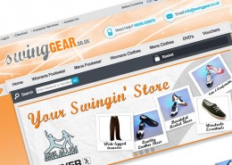 Swing Gear